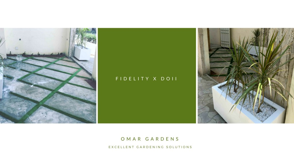 fildelity project