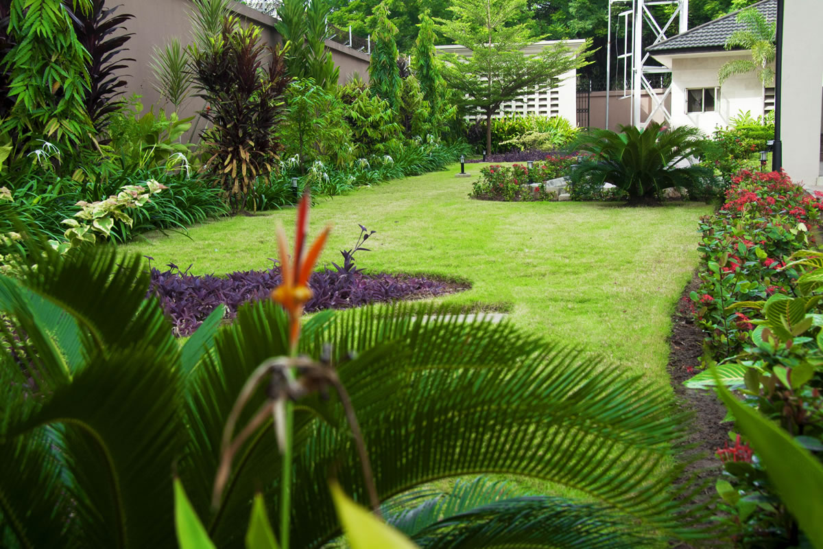Omargardens Horticulture And Garden Services In Nigeria